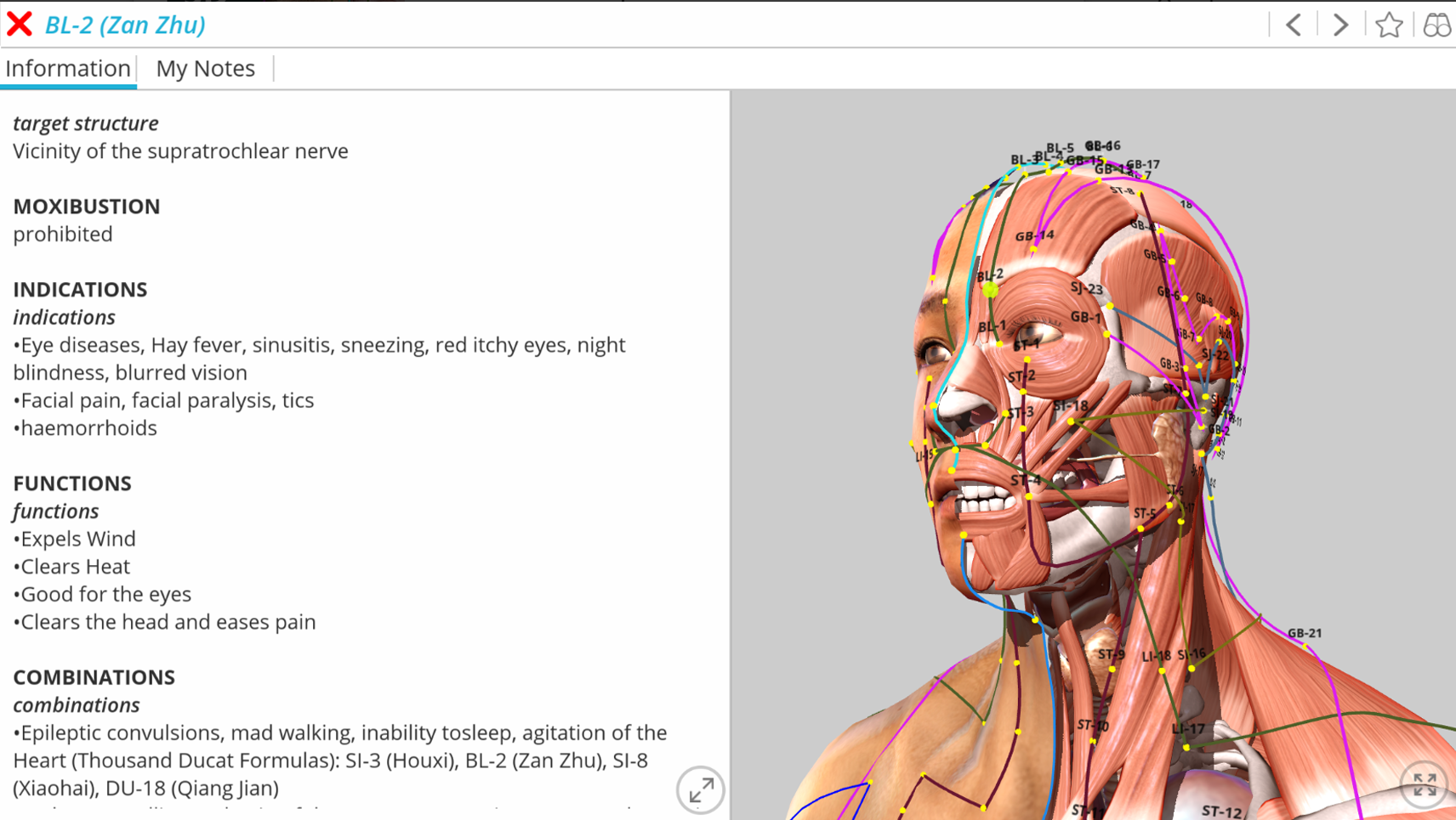 Visual Acupuncture 3D – A complete visual and interactive 3D